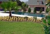 Pool 203