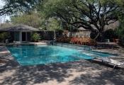 Pool 79